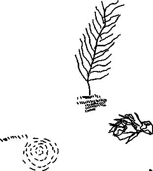 dibujo-rama-2
